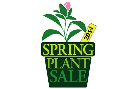 spring_plant_logo