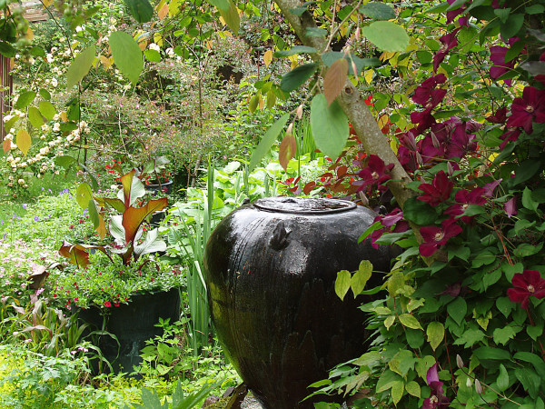bella madrona gardens