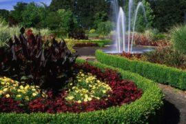 silverton_garden