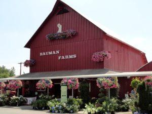 July 11. 10:30am. Bauman Farms Old Farmhouse @ Bauman Farms